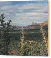 Capitol Butte Wood Print