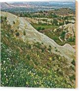 Cappadocia Landscape-turkey Wood Print