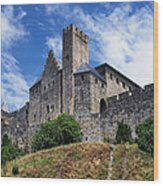 Carcassonne By Day Wood Print