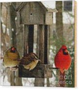 Cardinals And Carolina Wren Wood Print