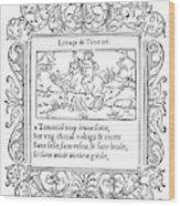 Cartouche, 1543 Wood Print