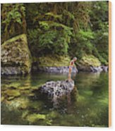 Cascade Locks, Oregon, Usa. A Woman Wood Print