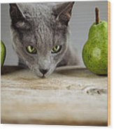 Cat And Pears Wood Print
