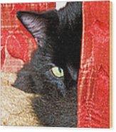 Cat Hiding Behind Drapes Wood Print