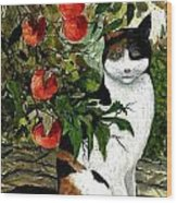 Cat On The Patio Wood Print