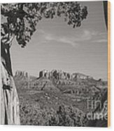 Cathedral Rock Framed By Juniper In Sedona Arizona Wood Print