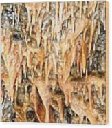 Cave Formations 2 Wood Print