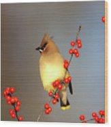 Cedar Waxwing (bombycilla Cedrorum Wood Print