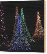 Celebration Of Lights - Oshkosh Wood Print