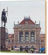 Central Railway Station Zagreb Wood Print