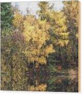 Cezanne Style Digital Painting Beautiful Vibrant Autumn Woodland Reflecions In Calm Lake Waters Wood Print