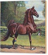 Ch. Merchant Prince Wood Print