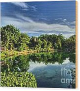 Chankanaab Lagoon Reflections Wood Print