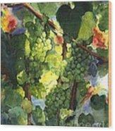 Chardonnay Au Soliel Wood Print