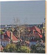Charleston Rooftops Wood Print