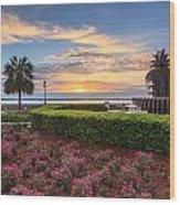 Charleston Sc Waterfront Pineapple Fountain Wood Print