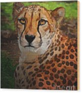 Cheetah Mama Wood Print