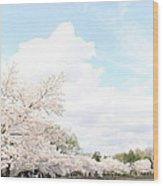 Cherry Blossoms - Washington Dc - 01131 Wood Print by DC Photographer