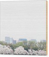 Cherry Blossoms - Washington Dc - 011316 Wood Print by DC Photographer
