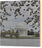 Cherry Blossoms With Jefferson Memorial - Washington Dc - 01137 Wood Print by DC Photographer