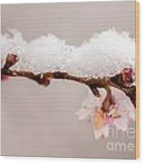 Cherryblossom With Snow Wood Print