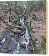 Chesterfield Gorge Wood Print