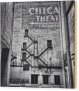 Chicago Theatre Alley Entrance Photo Wood Print
