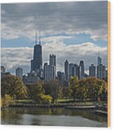 Chicago Lincoln Park Wood Print