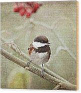 Chickadee In Winter Wood Print
