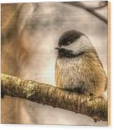 Chickadee Magic Wood Print