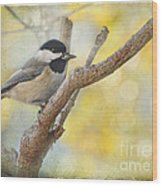 Chickadee With His Prize   Wood Print