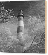 Chincoteague Island Lighthouse Wood Print