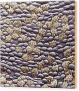 Ciliated Cells In Trachea, Sem Wood Print
