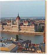 City Of Budapest Cityscape Wood Print
