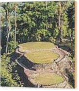 Ciudad Perdida In Colombia Wood Print