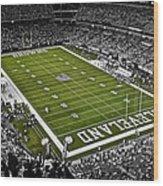 Cleveland Browns Stadium Wood Print