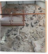 Cleveland-lloyd Dinosaur Quarry Fossils Wood Print
