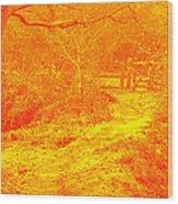Clifton Woods Wood Print