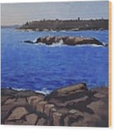Coastal Waters Of Maine - Art By Bill Tomsa Wood Print
