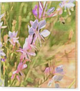 Color 149 Wood Print