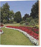 Colourful Flowerbeds In Hyde Park In London England Wood Print