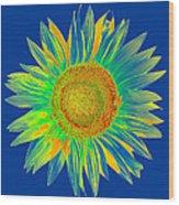 Colourful Sunflower Wood Print