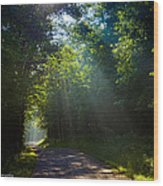 Come To The Light Wood Print by Paul Herrmann