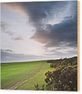 Countryside Landscape Path Leading Through Fields Towards Dramat Wood Print
