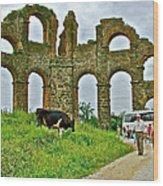 Cow By Second Century Aspendos Aqueduct-turkey Wood Print