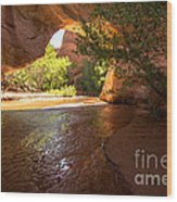 Coyote Natural Bridge - Coyote Gulch - Utah Wood Print by Gary Whitton
