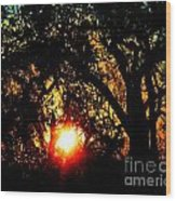 Creole Trail Sunset Wood Print
