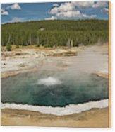 Crested Pool, Upper Geyser Basin Wood Print