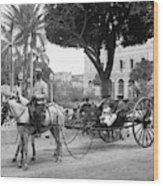 Cuba Havana, C1904 Wood Print