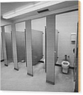 cubicle toilet stalls in womens bathroom in a High school canada north america Wood Print by Joe Fox